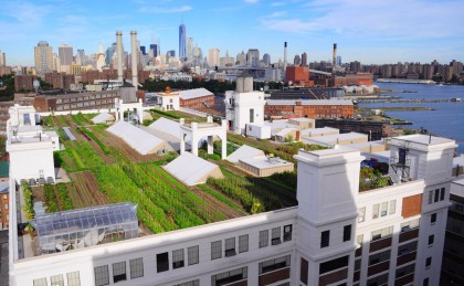 navy-yard-farm
