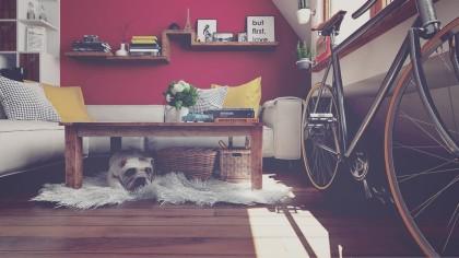 departamento_bicileta_perro_instagram_decoracion_diseño_interior_inmobiliario_grupo_4S