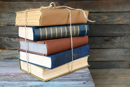 libros_diccionario_conocimiento_articulo_eldi_2015_lectura_carlos_munoz_4s